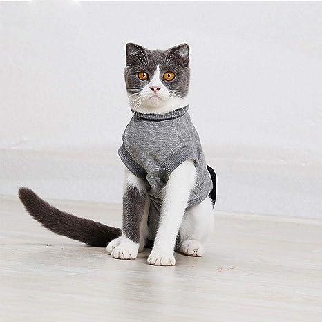 Traje de Recuperación para Mascotas, Ropa para Gatos, Suave y elástica Cubierta Gruesa Engrosada con Hilo ...
