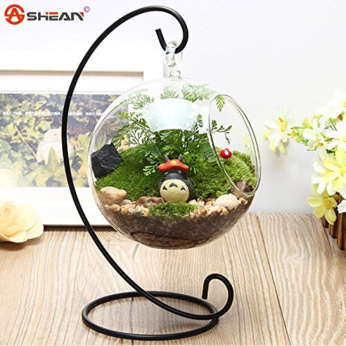 1-pcs-hot-clear-glass-round-with-1-hole-flower-plant-stand-hanging-vase-hydroponic-home-wedding-deco