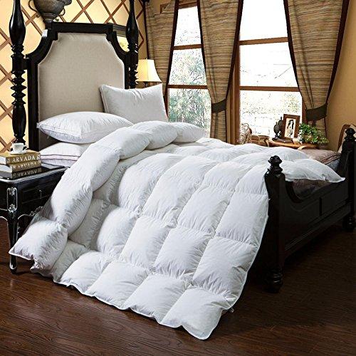 Natural 100% Organic Comforter - 9