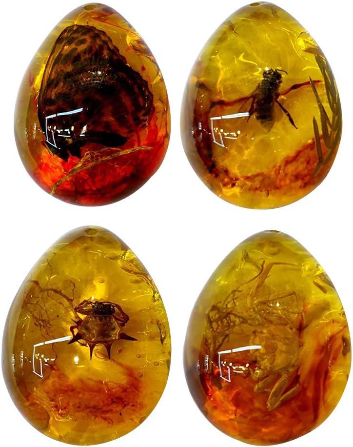 VORCOOL fósil de ámbar con de las muestras de insectos piedras cristal spécimens colección de adornos para la casa colgante Oval para niños (diseño aleatorio)