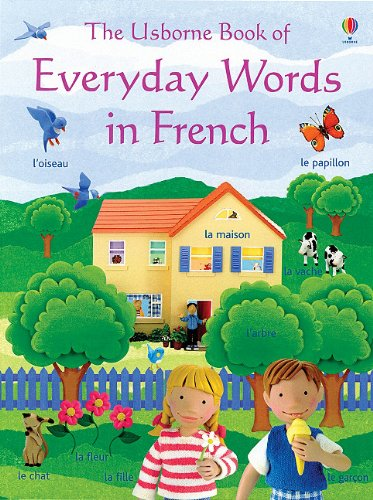 The Usborne Book of Everyday Words in French (French Edition)