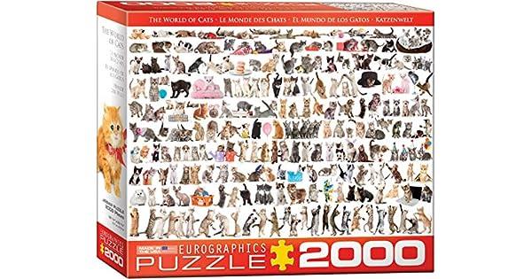 Amazon.com: Eurographics el mundo de gatos Puzzle (2000 ...