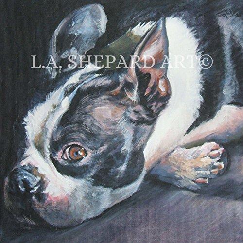 "A Boston Terrier Dog art portrait print of an LA Shepard painting 8x8"""