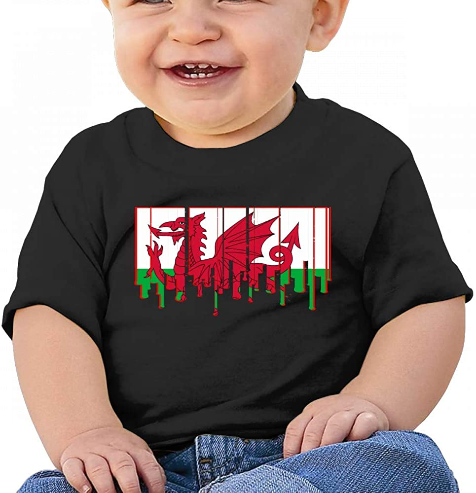 Cool Welsh Dragon Flag Baby Boys Toddler Short Sleeve T-Shirts Tees