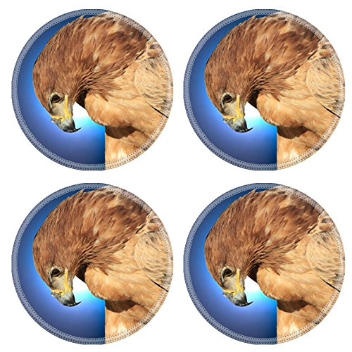 MSD Round Coasters Non-Slip Natural Rubber Desk Coasters design 28424228 Tawny Eagle Wildlife Background from Africa Bow of Blue Beauty (Eagle Tawny)