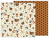 American Crafts Pebbles Woodland Forest 12 x 12'' Paper (25 Pack), Woodland Critters