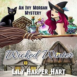 Wicked Winter Audiobook