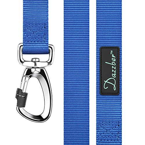 Dazzber Strong Durable Nylon Dog Leash, 5 Feet Long, Royal Blue, Perfect Leashes for Small to Large Dogs