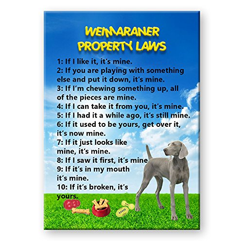 (Weimaraner Property Laws Fridge Magnet Funny)