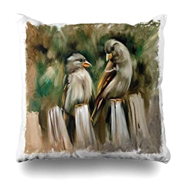 Amazon.com: Ahawoso - Funda de almohada con diseño de flores ...