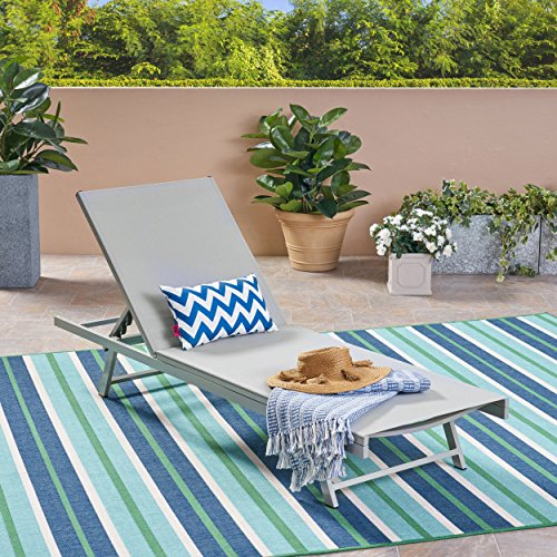 Christopher Knight Home 304996 Simon Outdoor Aluminum and Mesh Chaise Lounge, Gray, Dark Grey