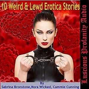 10 Weird & Lewd Erotica Stories Audiobook
