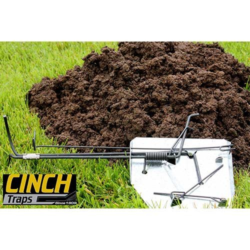 Cinch Gopher Trap with Tunnel Marking Flag (Medium) Heavy-Duty, Reusable Rodent Trapping System | Lawn, Garden, and Outdoor Use | Weather-Resistant Steel (Cinch Traps)
