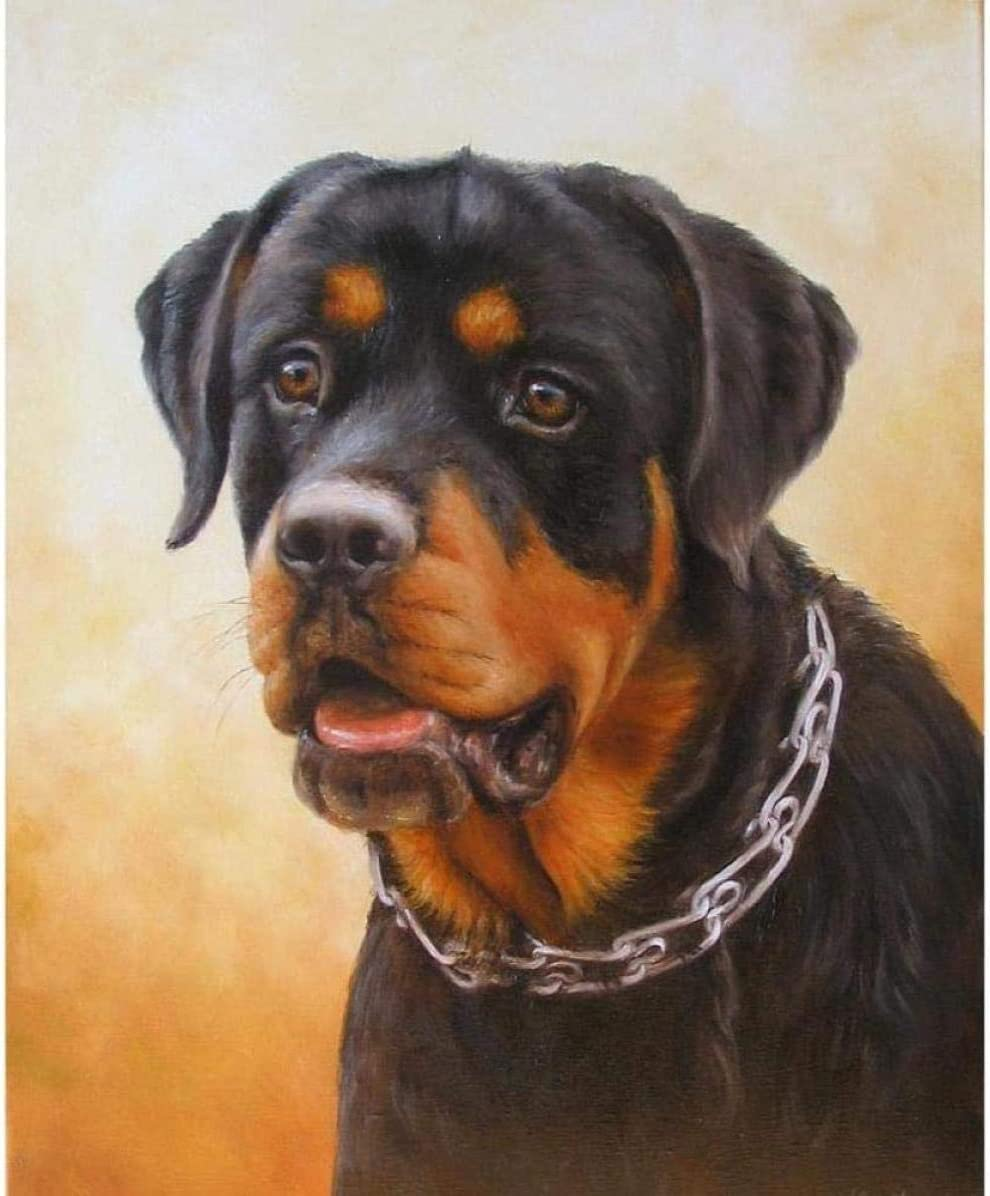 A-Generic Paint by numbers DIY Oil Painting Painting By Numbers Adult Kit 16x20 Inches For Beginners Kids-Black Dog Rottweiler Creative Digital Linen Canvas New Year Home Decor