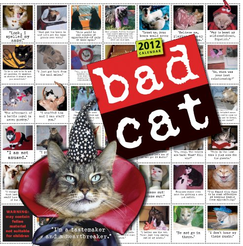 Bad Cat 2012 Wall Calendar - Cats 2012 Calendar