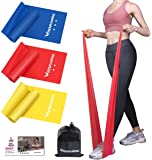 RENRANRING Resistance Bands, Exercise Bands for Physical Therapy, Yoga, Pilates, Rehab and Home Workout, Non-Latex…