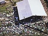 The Jonestown Massacre: An American Apocalypse (1978)