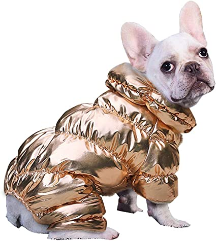 Amazon Com Pet Artist Winter Puppy Dog Coats For Small Dogs