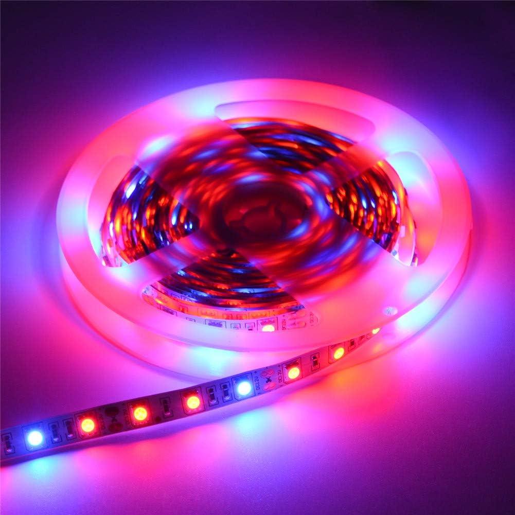 LED Grow Lights Strip Lamp 5 Red 1Blue 5M//Roll 60LED//M Full Spectrum 300.