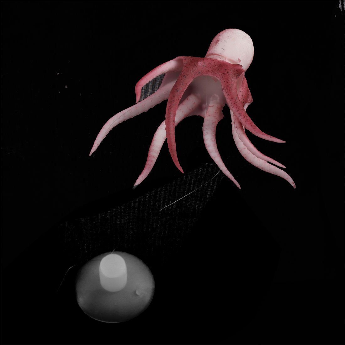 Amazon.com: Acuario de medusas emulational Suave Rojo del ornamento: Pet Supplies