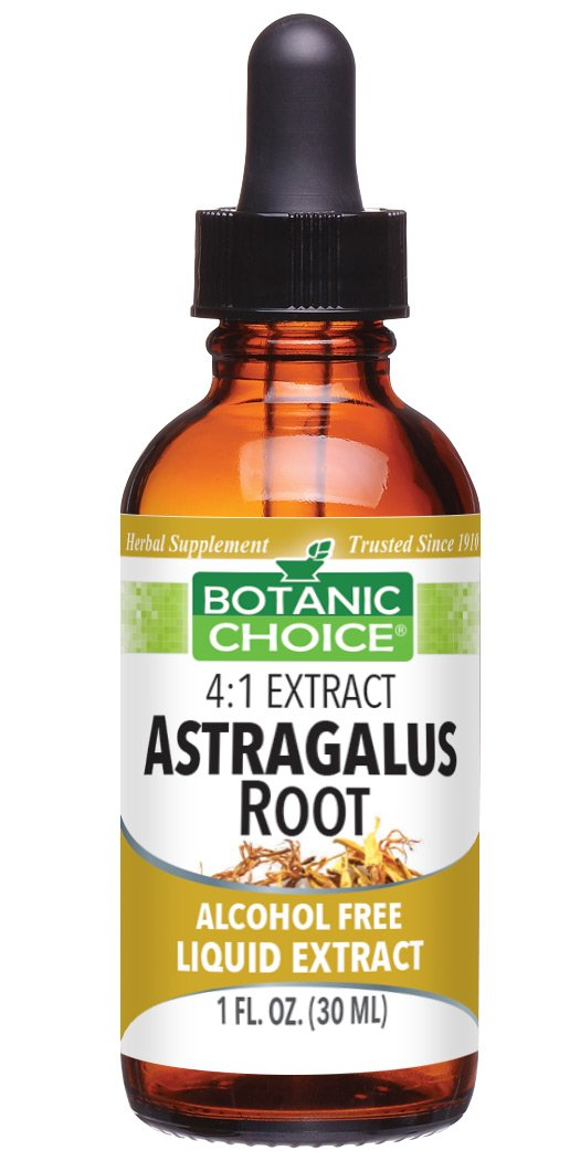Botanic Spa Astragalus Root Liquid Extract, 1 Fluid Ounce