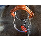 "Tackmaster Horse Equine SS Short S"" Leather Hackamore 6"" Cheeks/Curb Chain Bit 3543"