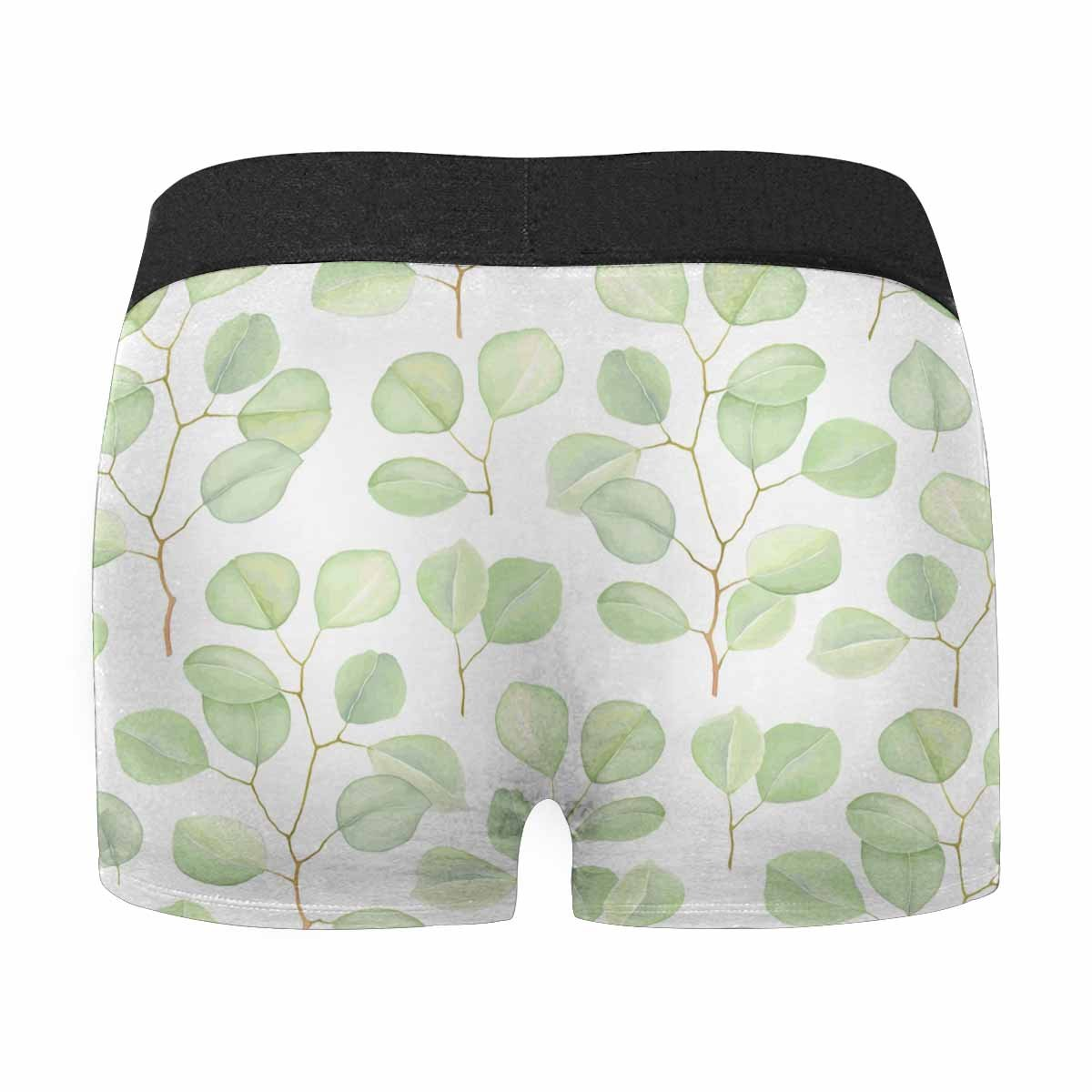 INTERESTPRINT Mens All-Over Print Boxer Briefs Greenery with Branches Silver Dollar Eucalyptus XS-3XL
