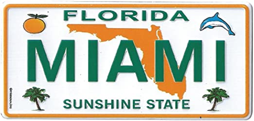 Florida Sunshine State License Plate Shot Glass