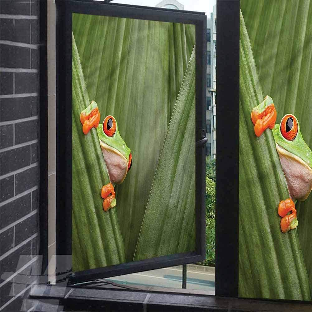alisoso Insulating Window Film Animal Frog Sitting Between Leaves Frosted Removable Glass Covering for Bathroom 17.7 x 157.5 inches