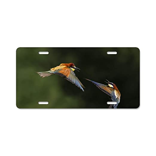 YEX Flight Flower Flowers Hummingbird License Plate with 4 Holes Novelty Car Licence Plate Covers Tag Sign 12 x 6