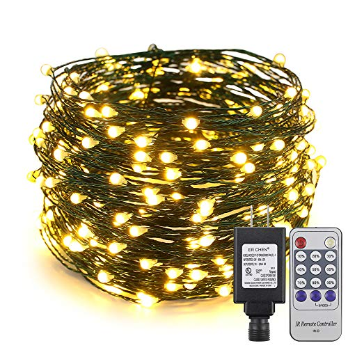 ER CHEN 100ft Led String Lights, 300 Led Starry Lights on 30M Green Copper Wire String Lights Power Adapter + Remote Control(Warm White)