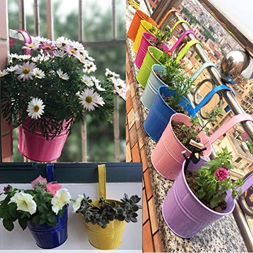 KINBEDY Hanging Flower Pots, Garden Pots Balcony Planters Metal Bucket Flower Holders - Detachable Hook, Multicolor, 10 PCS. by KINBEDY