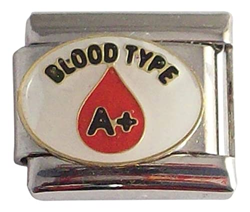 3aef1673065db Gadow Jewelry 2 Pack Blood Type A+ Positive Medical Italian Charms for  Bracelet