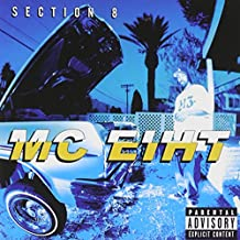 Section 8 [Explicit]