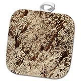 3dRose TDSwhite – Rock Photos - Natural Geological Formation - 8x8 Potholder (phl_281898_1)