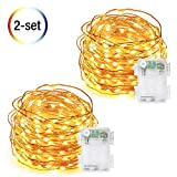 Firefly String Lights, DecorNova 9.8 Feet 60 LED Battery Operated Copper Wire Fairy String Lights with 3 AA Battery Case & Timer for Christmas Bottle Bedroom Wedding Party, Warm White (2 Set)