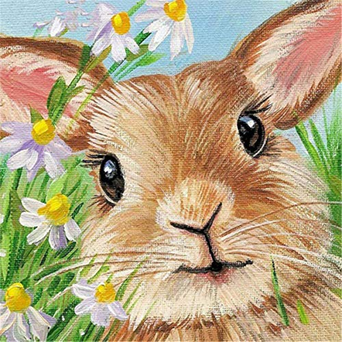 - EOBROMD DIY 5D Diamond Painting Kit for Adult Full Drill Rabbit Rhinestone Arts Craft for Wall Decor Easter Bunny 12x12