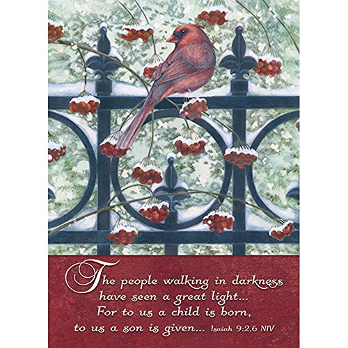 - Legacy Publishing Group Boxed Holiday Greeting Cards with Scripture, Cardinal & Berries on Fence (HBX22704)