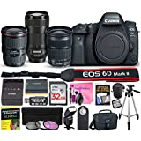 Canon EOS 6D Mark II Digital SLR Camera ESSENTIAL Multi-Lens STARTER Kit with EF 16-35mm f/4L IS USM Lens, EF 24-105mm f/3.5-5.6 IS STM Lens, EF 70-300mm f/4-5.6 IS II USM Lens & Camera Works Bundle