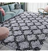 Homore Fluffy Bedroom Rug Super Soft Velvet Shaggy Plush Carpet 4x5.9 Feet, Shag Moroccan Area Ru...