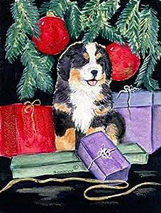 Perro de montaña bernés bandera, poliéster, Multicolor, S