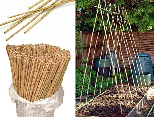 Wilsons Direct Bastones de madera natural de bambú resistentes ...