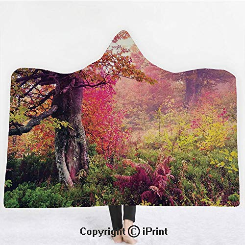 "- Farm House Decor 3D Print Soft Hooded Blanket Boys Girls Premium Throw Blanket,Fairy Majestic Landscape with Autumn Trees in Forest Natural Garden in Ukraine,Lightweight Microfiber(Kids 50""x60"")Red Gr"