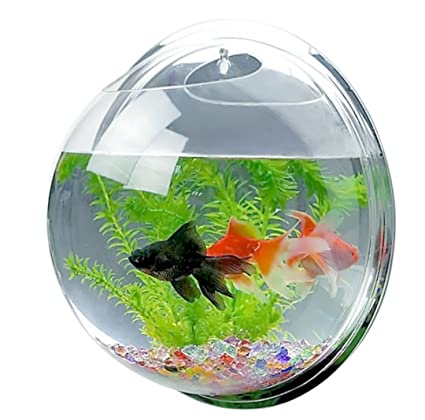 buy décor fish tank acrylic wall mount hanging fish aquarium bowl