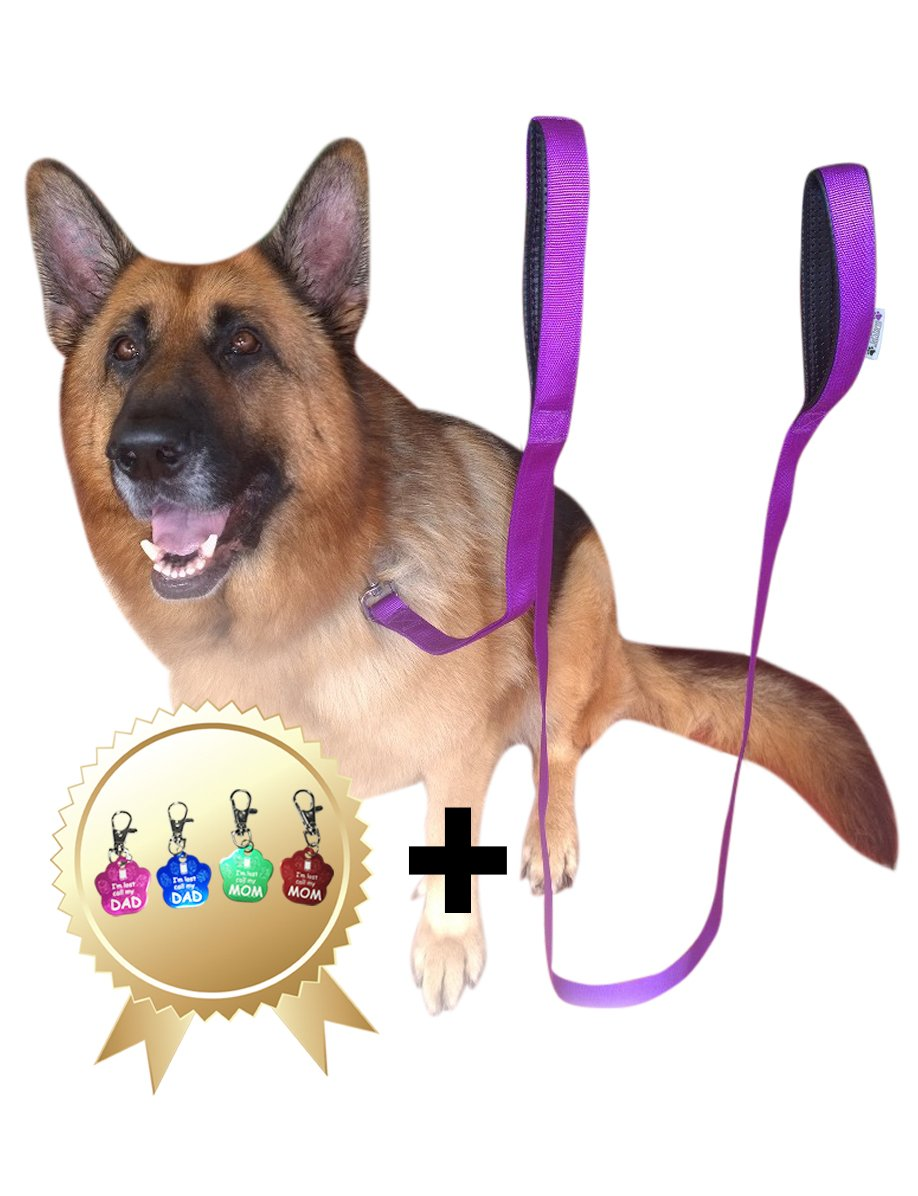 2 Handles Dog Leash - 8FT 2Inch Dual Handle Dog Leash - FREE Bonus Dog Tag - Dog Leashes For Large Dogs Heavy Duty - Leash For Dogs Who Pull - Dog Leash Large Heavy Duty