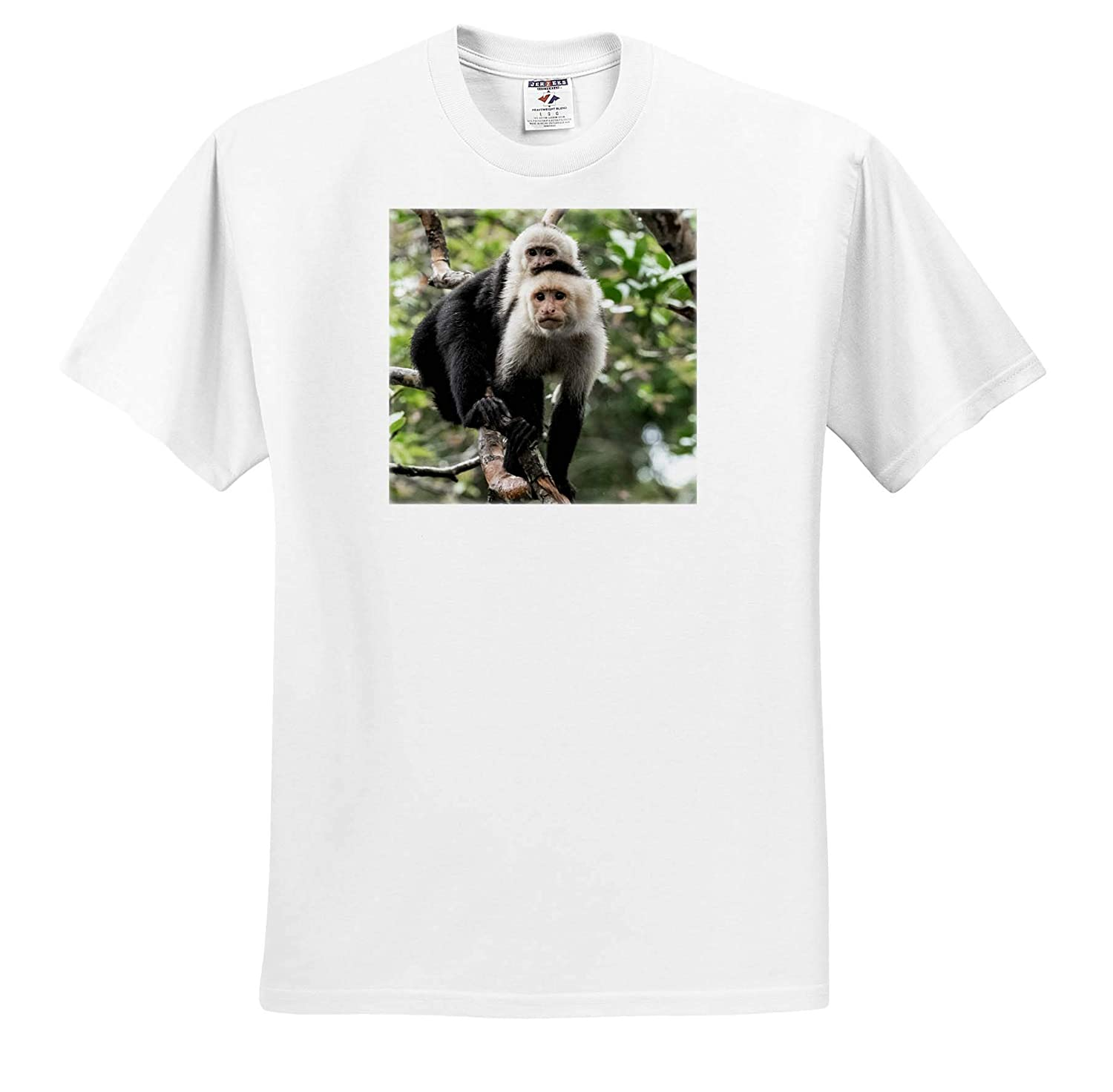 3dRose RONI Chastain Photography T-Shirts Monkey mom and Baby