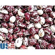 USA SELLER Good Mother Stallard Bean 10-500 HEIRLOOM NON-GMO