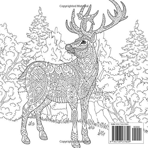 National Park 1 – Adult Coloring Book – Stress Relieving Patterns & Designs: More than 50 unique, fabulous, delicately designed & inspiringly intricate stress relieving patterns & designs!