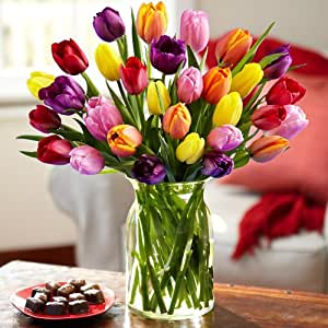 30 Multi Colored Valentine 39 S Tulips With