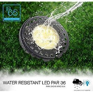 LED PAR36 Bulb, 15W (100W Equivalent), IP67 Wet Location Rated, Landscape Garden Light, 12V AC/DC, 1000lm, 5000K (Day Light)